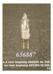 656887.JPG